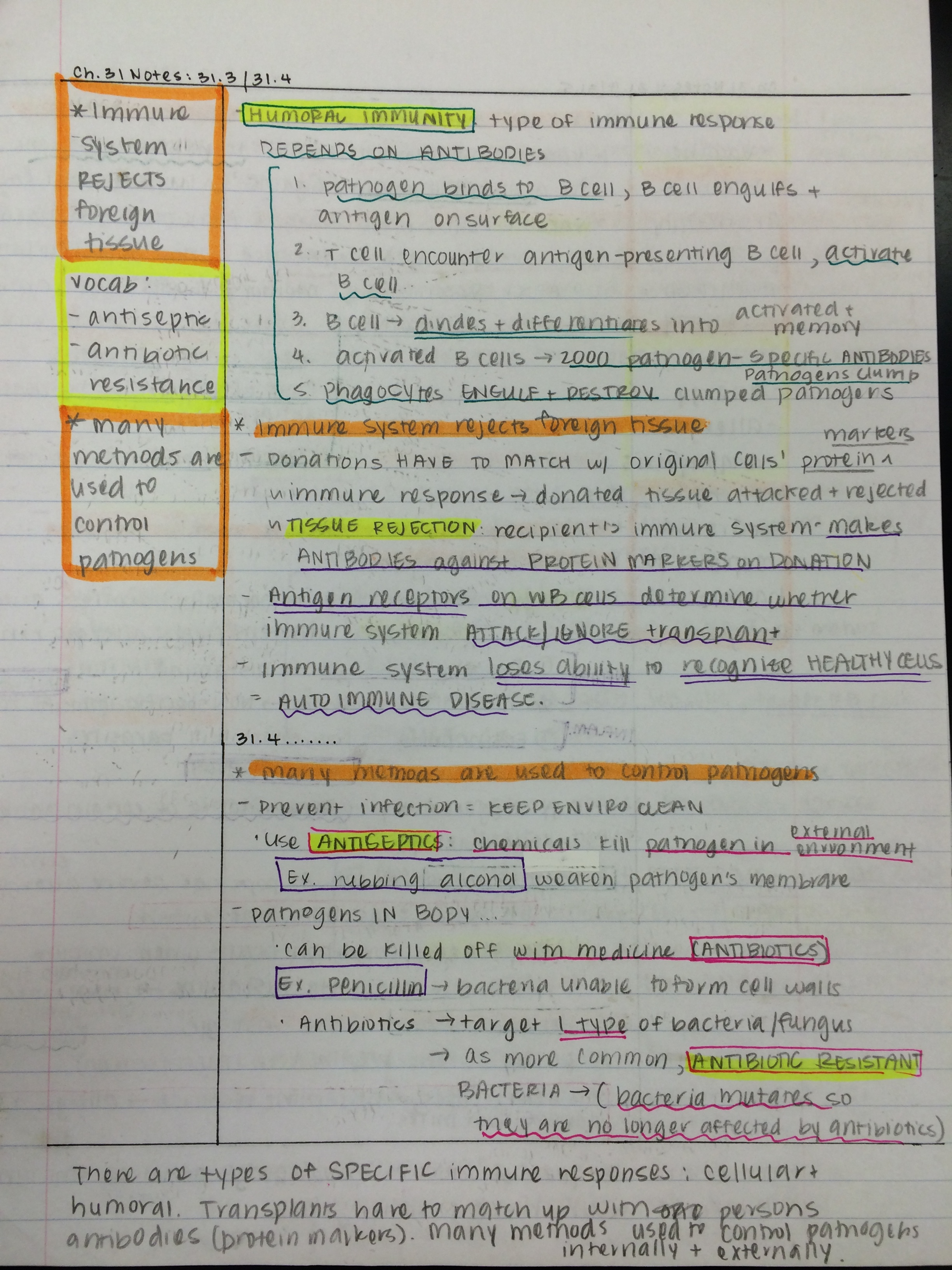 cornell notes sample and directions This method of note taking helps increase retention of new information and really  helps when it is time to  cornell notes instructions sample of cornell notes.